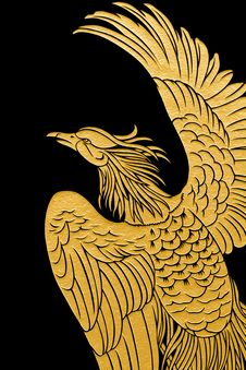 Golden Eagle. Stock Photography