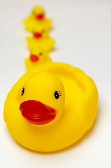 Free Bathing Stock Images - 2712574