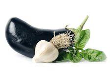 Free Basil, Garlic & Eggplant Stock Photos - 2715503