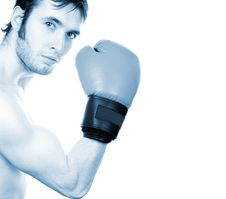 Young Boxer Stock Photo