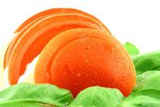 Free Tasty Tomato Stock Photos - 2718503