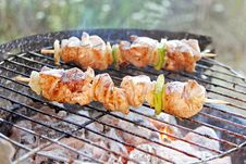 Free Barbecue Stock Photos - 2718693