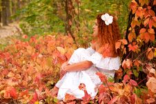 Free Young Woman Among Red Leaves Stock Photos - 27107263