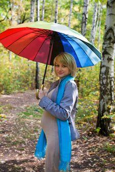 Autumn Portrait Blond Pregnant Woman Stock Images
