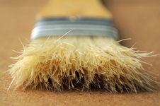 Free Flat Paintbrush Bristles Stock Image - 27114431