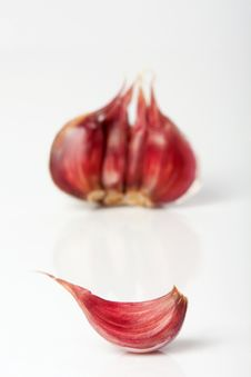Free Garlic On White Stock Images - 27118184