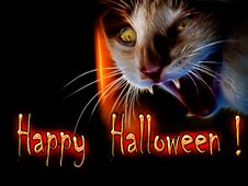 Free Halloween Cat Stock Images - 27119514