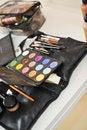 Free Make-up Colorful Eyeshadow Palettes Royalty Free Stock Image - 27128946