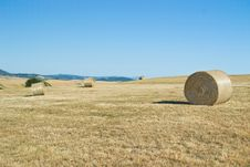 Free Hay Bales In Tuscany &x28;Italy&x29; Field Stock Images - 27127004