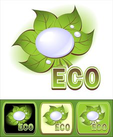Set Ecologic   Icons   Icon With Leaves And Water