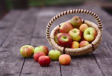 Free Apples In The Basket Royalty Free Stock Image - 27128606