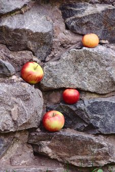 Free Background With Apples Stock Photography - 27128612