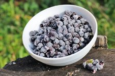 Free Frozen Bilberries In Bowl On Tree Stump Stock Photos - 27137173