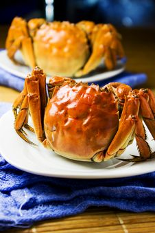 Free Crab Royalty Free Stock Image - 27138606