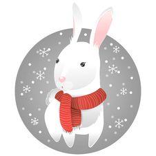 Free White Rabbit Stock Photography - 27138932