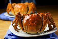 Free Hairy Crab Stock Photography - 27139212