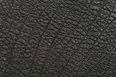 Free Brown Leather Texture Royalty Free Stock Photography - 27139267