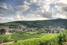 Free Alsace Landscape And Vinewyard Stock Images - 27144834