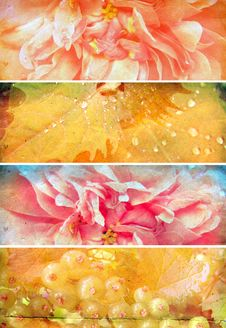 Set Of Banners With The Texture Of Old Paper Stock Photo