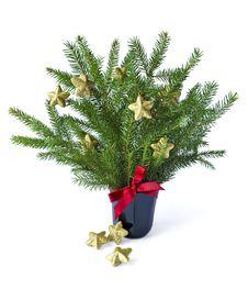 Free Christmas Tree Royalty Free Stock Image - 27150136