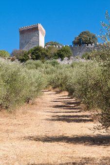 Free Castiglione Del Lago. Umbria. Royalty Free Stock Photos - 27150398