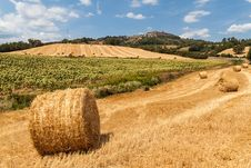 Free Tuscan Countryside Royalty Free Stock Photography - 27150557
