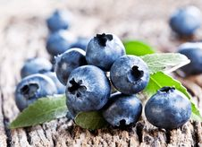 Blueberries With Leaves Stock Image