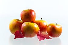Free Apples With Wine Leaves Royalty Free Stock Image - 27164796