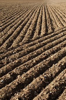 Free Ploughed Field Patterns Stock Photos - 27166533