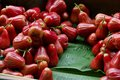 Free Rose Apples Royalty Free Stock Photo - 27187985