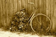 Free Forgotten Bicycle Royalty Free Stock Photography - 27180347