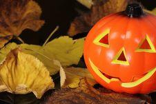 Free Halloween Stock Images - 27180504