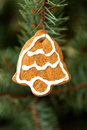 Free Christmas Ornament Stock Photography - 27192502