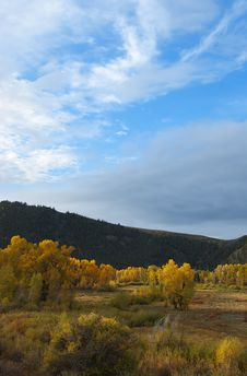 Free Colorado Fall-12 3357 Stock Image - 27194581