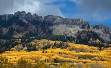 Free Colorado Fall-12 3732 Royalty Free Stock Photography - 27194597