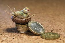 Free Bird Nest On Money Royalty Free Stock Images - 27195599