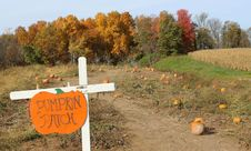 Free Colorful Sign Saying Pumpkin Patch Stock Image - 27196491