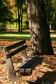 Free Bench In Park Stock Images - 27197794