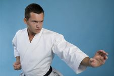 Free Karate Kata Royalty Free Stock Photography - 27198047