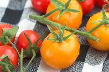 Free Mixed Organic Tomatoes Stock Photos - 2720883