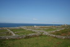 Irish Stone Walls Stock Image
