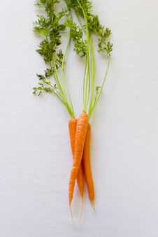 Free Fresh Carrots Royalty Free Stock Photo - 2723475
