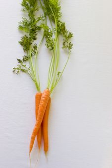 Free Fresh Carrots Stock Photography - 2723482