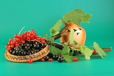 Red And Black Currant. Stock Photo