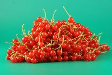 Free Berries Of A Red Currant. Royalty Free Stock Images - 2723549