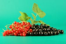 Free Red And Black Currant. Stock Photography - 2723572