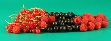 Free Berries On A Green Background. Stock Images - 2723574