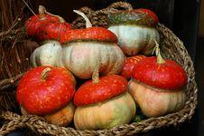 Free Pumpkins Basket Stock Image - 2724351