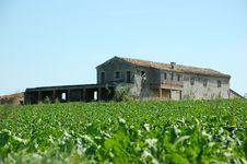 Free Old Country House - Italy Royalty Free Stock Photos - 2725338