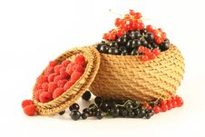 Free Berries In A Basket. Royalty Free Stock Image - 2729286